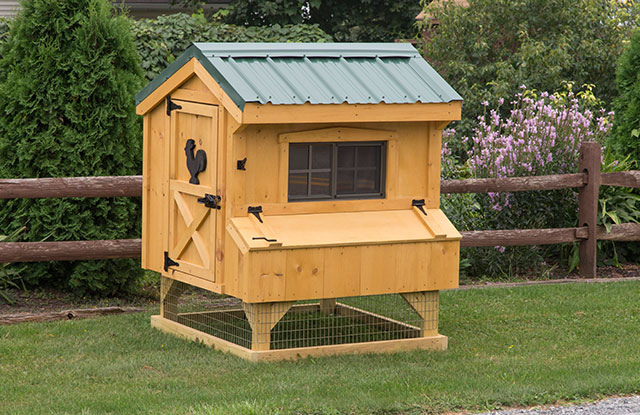 amish built small chicken coop with two stories